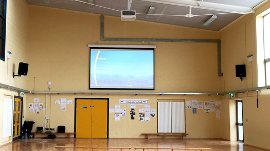 Ceiling Projector System - Toomey